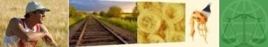 News: le attività di MEALeFOOD e le notizie dal Mondo Agroalimentare